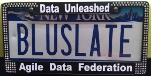 License plate and Data Unleashed license plate frame